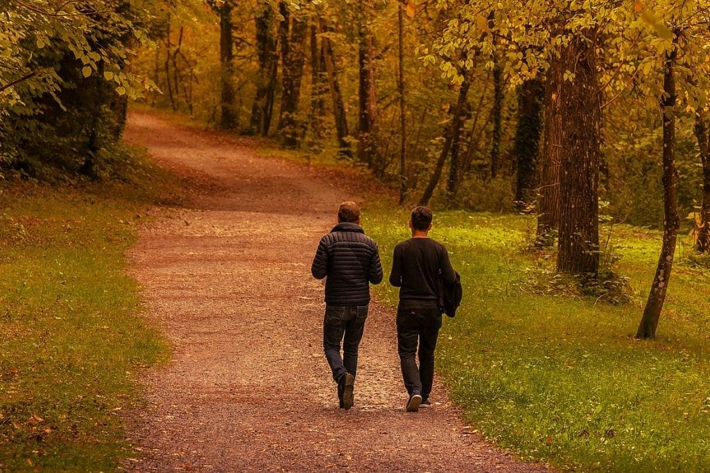 two men walking in the woods
